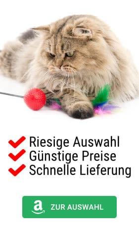 Auswahl Katzenspielzeug bei Amazon