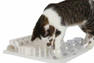 Cat Activity FunBoard von Trixie