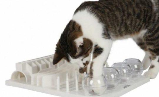 Trixie-Cat-Activity-Fun-Board_