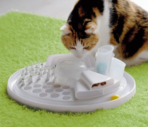 Edupet Katzenspielzeug Cat Center - intelligentes Futterspiel/Activity Board