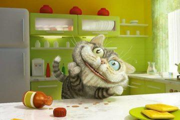 Wirkung von Baldrian auf die Katze