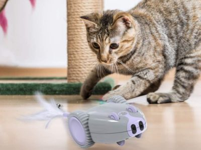 dadypet-roboter-maus katzenspielzeug