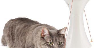 Lustige Laser-Spielzeuge für die Katze