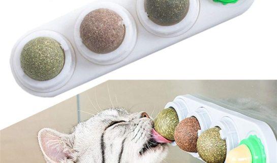 Katzenminze Ball für die Wand – Leckeres Wandspielzeug